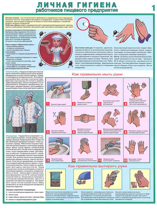 Плакаты «Личная гигиена работников пищевого предприятия» (С-84, ламинированная бумага, А2, 2 листа)